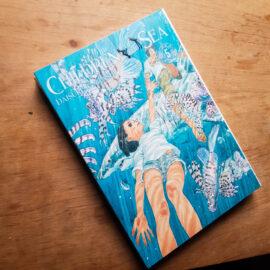 Children of the sea - Vol.5 (Lote Fechando o Ano)